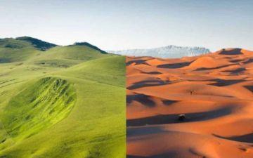 Зелена Сахара ЛОГО 2.jpg