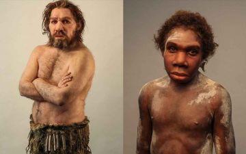 Чому неандертальці не.jpg