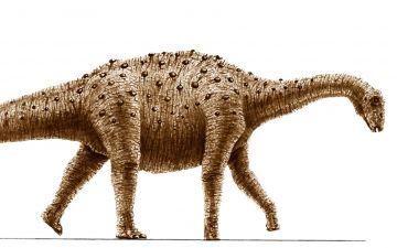 Бонітазаураa.jpg