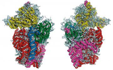 молекулярные-структуры.jpg