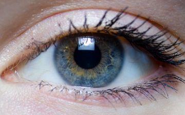 1. око людини.jpg
