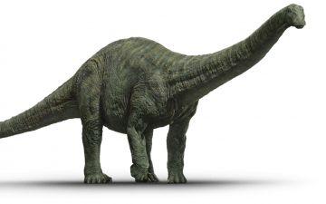 Апатозавр.jpg