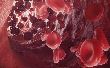 Дизайн гемоглобіну ЛОГО.jpg