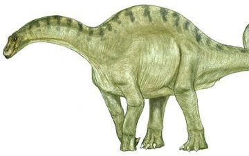 Дикреозавр.jpg