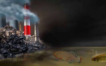 Ніякої еволюції в забрудненому середовищі ЛОГО.jpg