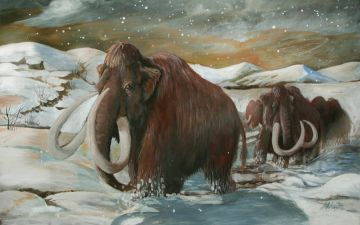 1300820776_wooly_mammoth_final_by_sedeslav_nevsepic.com.ua.jpg