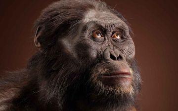 Перетворюючи мавпу на людину ЛОГО.jpg