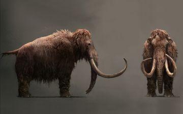 мамонты.jpg