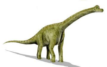 Брахіозаврp.jpg